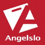 website winkelcentrum Angelslo